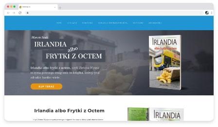 frytki z octem web & graphic design dublin ireland as design